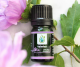 Valerian Essential Oil (Therapeutic)
