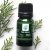 Pine Needle 100% Pure Essential Oil (Therapeutic)